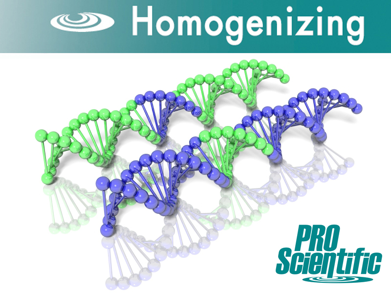 RNA DNA Homogenizer