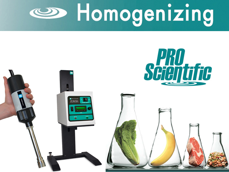 High Shear Homogenizer for Food