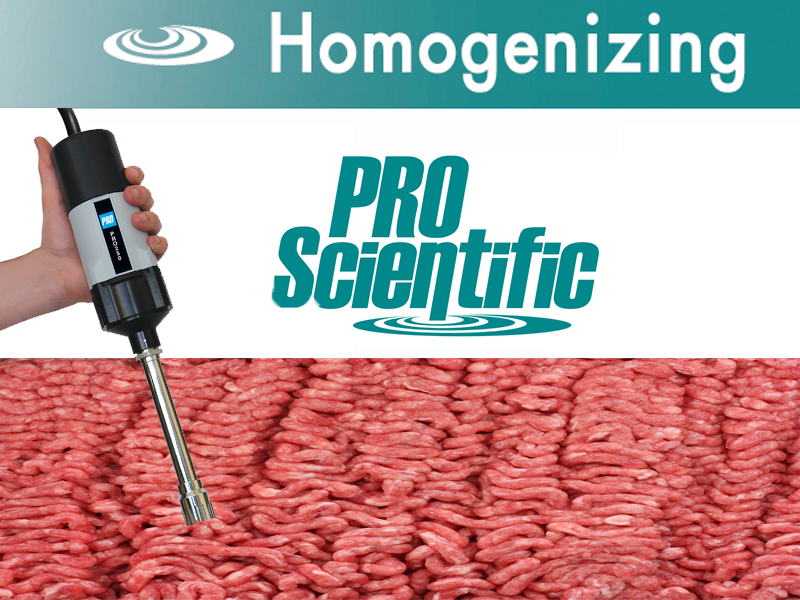 Raw animal protein homogenization
