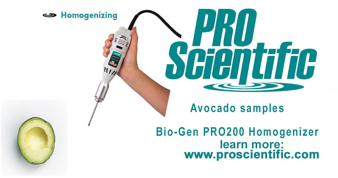 Avocado Homogenizer